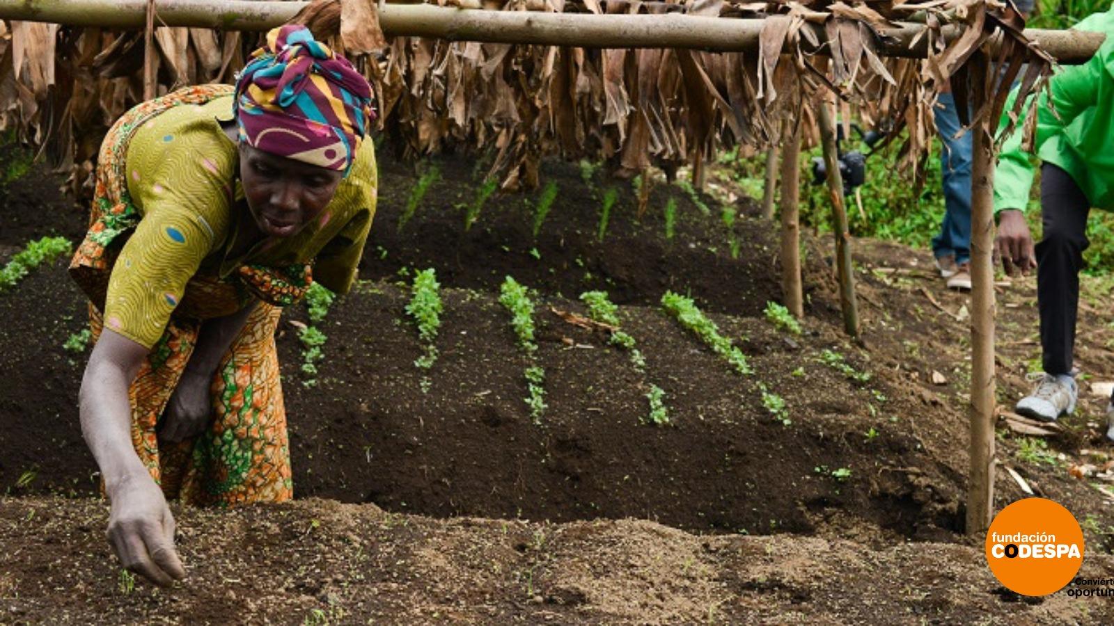 Tecnologías de bajo coste para campesinos
