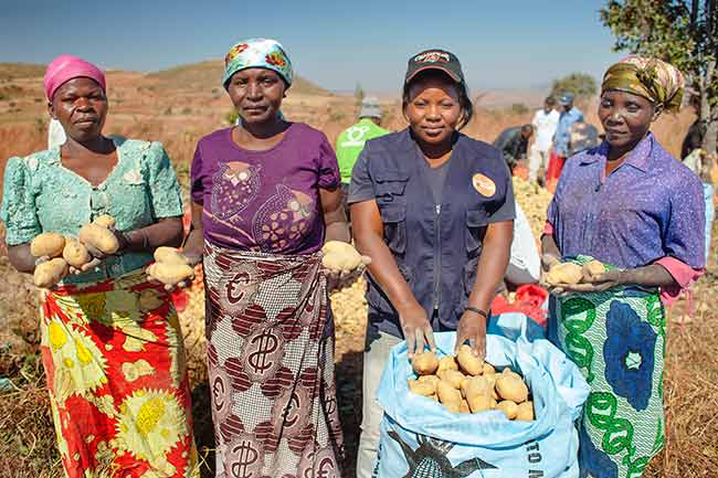 Africa agricultura