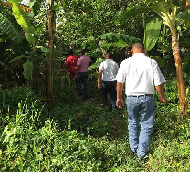 Consultores Dominicana