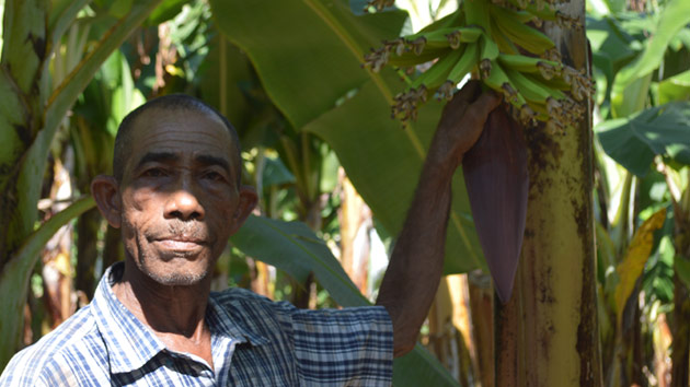 Llevamos el agrocrédito, en República Dominicana, a zonas donde la pobreza llega al 70% de las familias