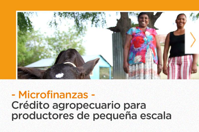 Crédito agropecuario para productores de pequeña escala