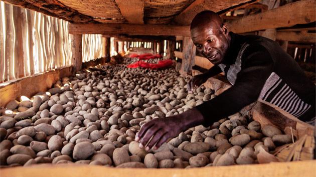 ISS se suma a la lucha contra el hambre en Angola