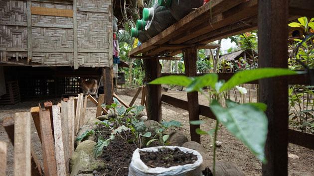 El cambio climático: un fenómeno que lleva el hambre a Filipinas