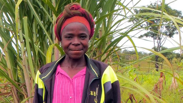 ¿Cómo desarrollamos un mercado rural de semillas de calidad para agricultores pobres en Angola?