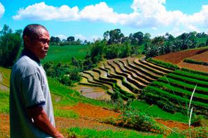 La pobreza rural representa casi 63% de la pobreza mundial