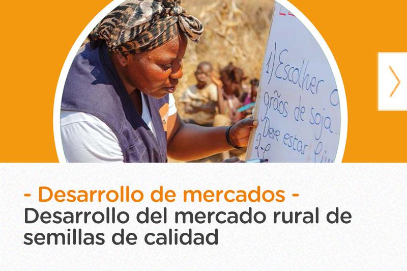 Desarrollo del mercado rural de semillas de calidad para productores pobres