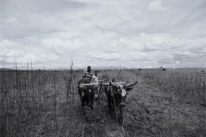 El 70% de la población en Angola vive en zonas rurales y en condición de pobreza Por CODESPA