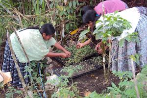 Una alternativa para las mujeres en Guatemala