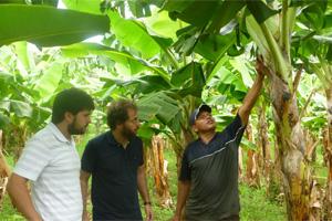 Participamos en una jornada sobre voluntariado corporativo organizada por Kellogg´s