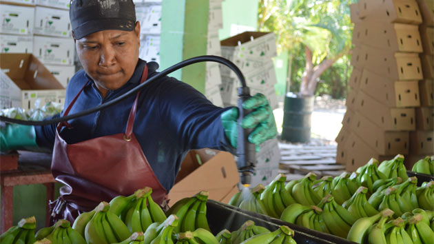 La importancia de la empresa en la lucha contra la pobreza