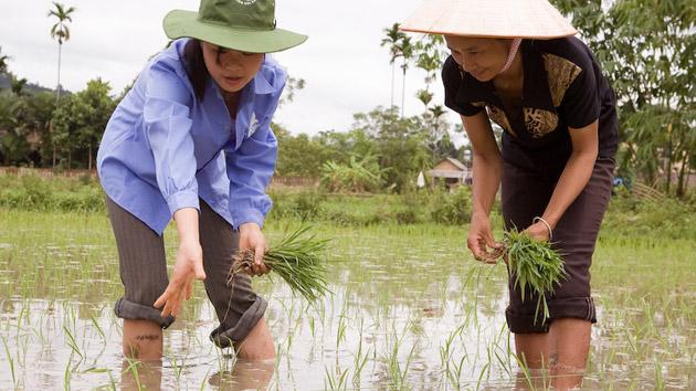 Una innovación para alcanzar la seguridad alimentaria en las zonas rurales de Vietnam