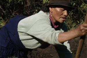 La mujer, principal protagonista de la actividad agrícola