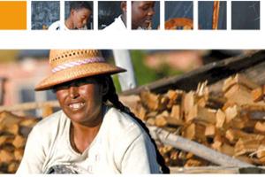 Ya tenemos disponible la Memoria 2011 en inglés y francés