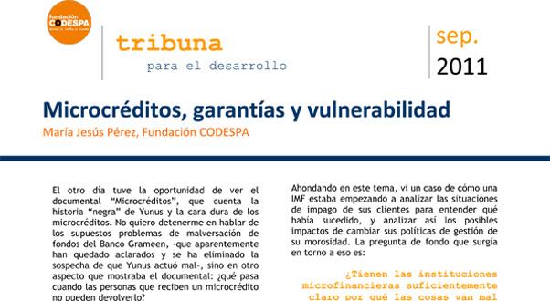 Microcréditos, garantías y vulnerabilidad