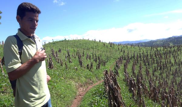 En Jinotega, Nicaragua, el 61,6% de la población sufre inseguridad alimentaria