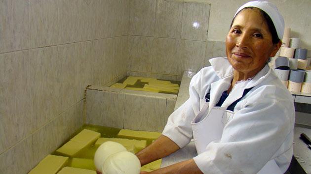 Formamos a 115 ganaderos para luchar contra la pobreza en Ecuador