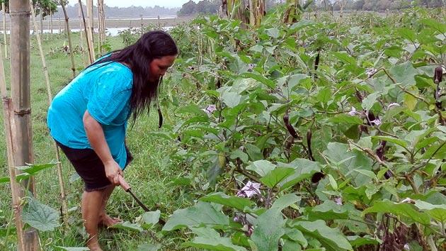 Sequías e inundaciones golpean a Emely y su familia