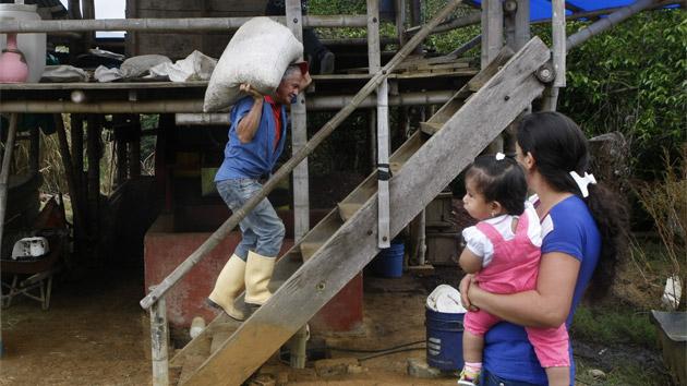 Negocios inclusivos para mejorar la seguridad alimentaria en Colombia