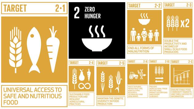 8 metas para acabar con la desnutrición