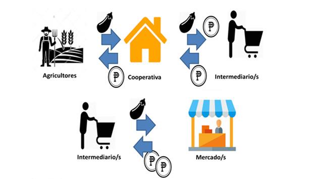 La principal actividad económica de la cooperativa es la consolidación de verduras