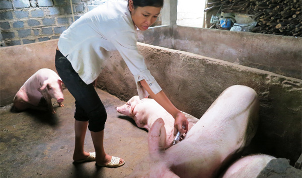 Fundación Roviralta nos ayuda a continuar nuestro trabajo en las poblaciones más vulnerables de las zonas rurales de Vietnam