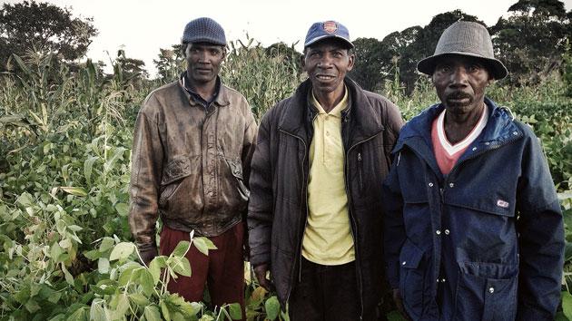 Presentamos en Huambo nuestra experiencia con pequeños productores