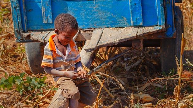 El problema de la seguridad alimentaria en Angola
