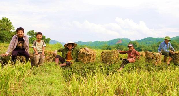 Consulta nuestro informe de evaluación externa sobre el desarrollo de mercados en Vietnam
