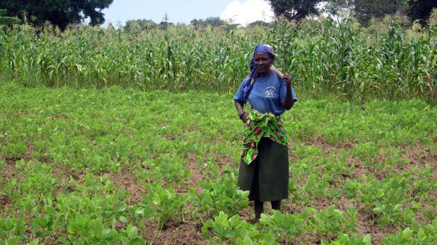 Un molino lleno de oportunidades para los campesinos angoleños